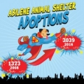 Abilene Animal Shelter 20/20