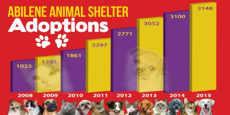 Contact / About Us | Rescue the Animals, SPCA